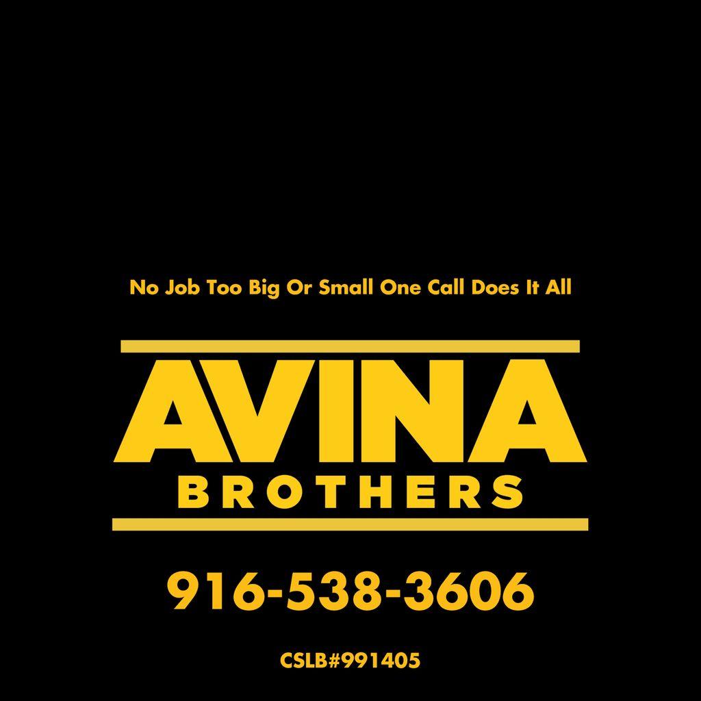 Avina Brothers