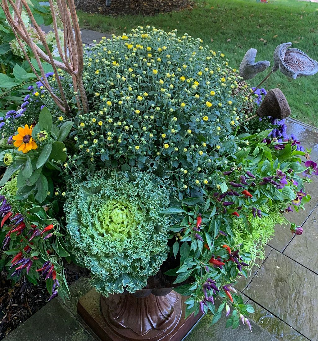 Container Planters