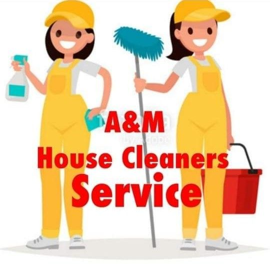House Cleaners Team