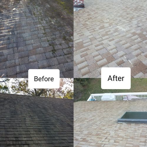 Black stain/Moss  Roof Wash