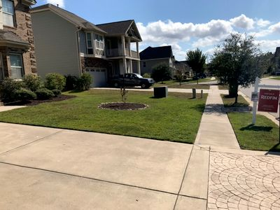 Avatar for Omega Landscape & Lawn Care West Columbia, SC Thumbtack