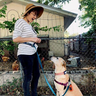 Avatar for Heckin Good Dog Training