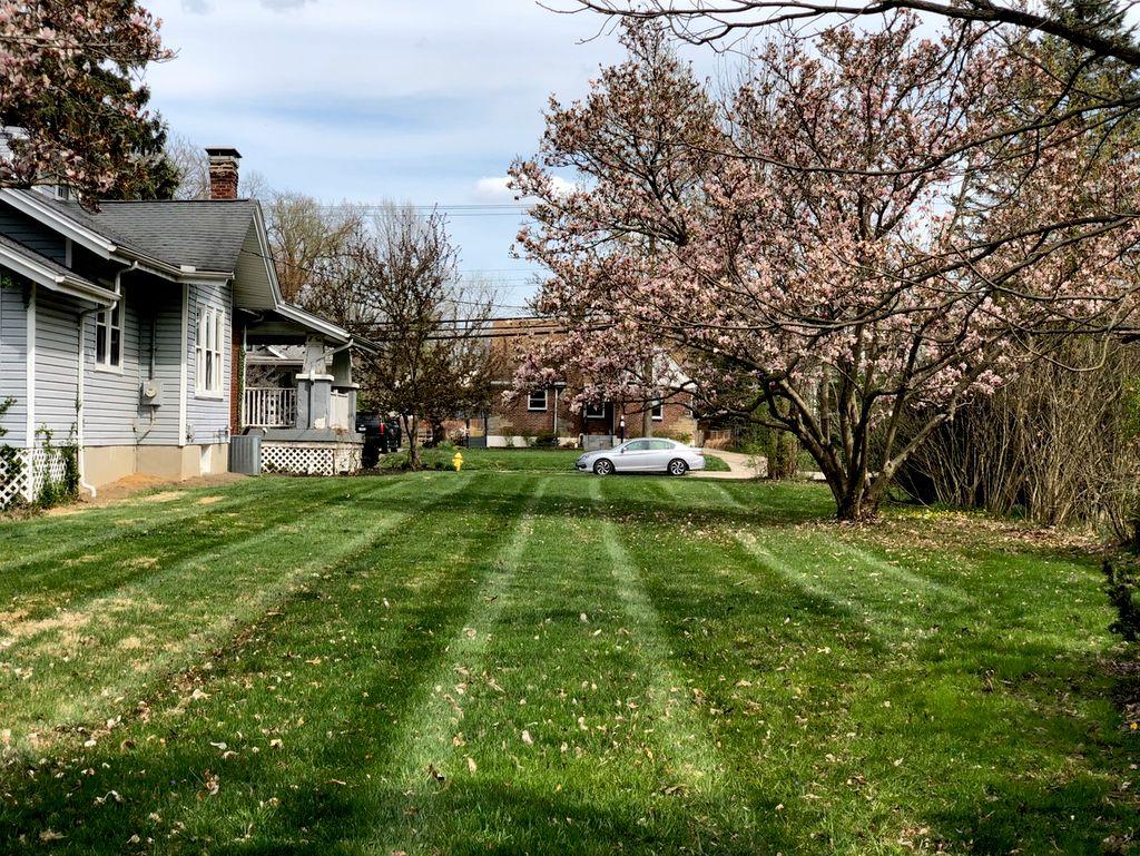 Larison Lawn Care