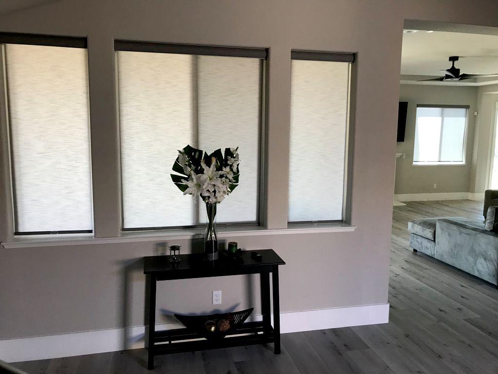 Alta Window Shades
