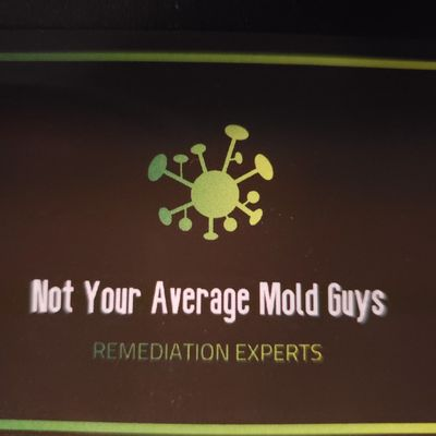 Avatar for Not Your Average Mold Guy's