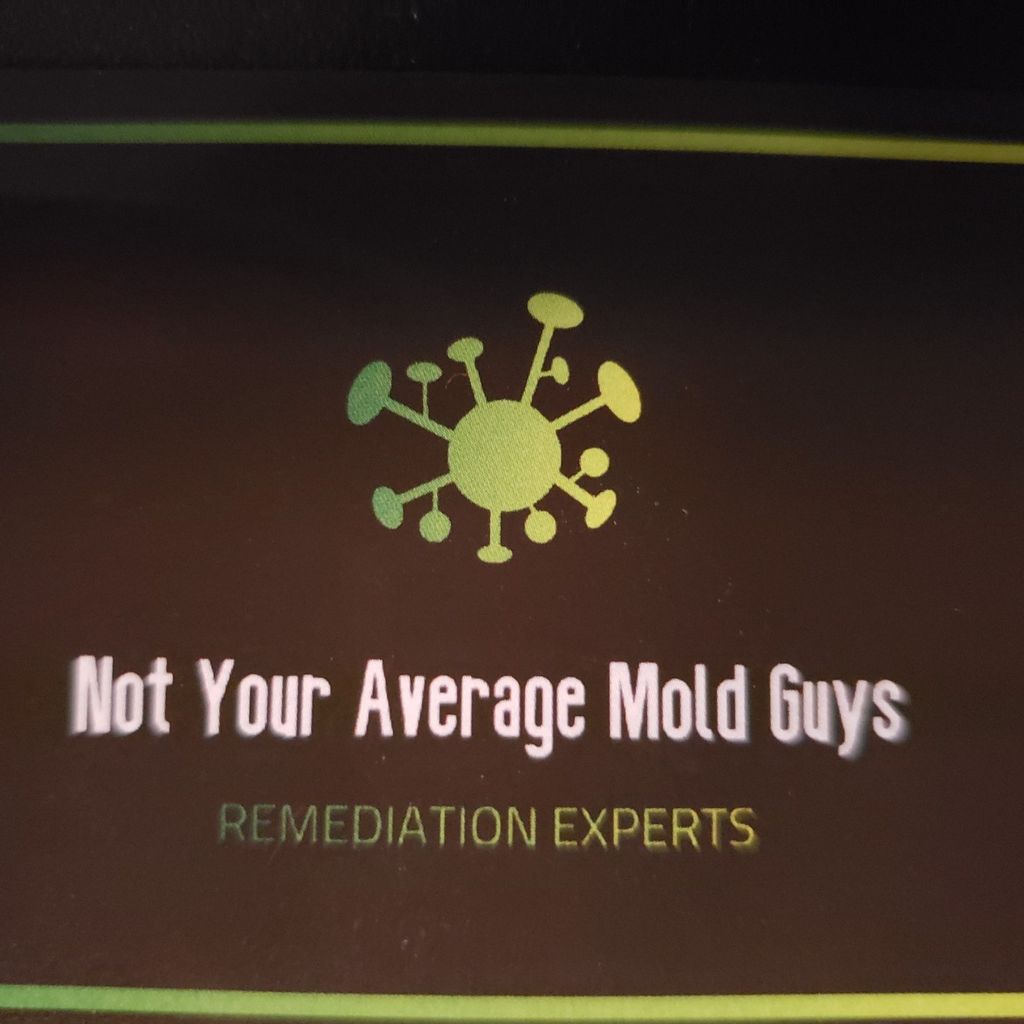 Not Your Average Mold Guy's