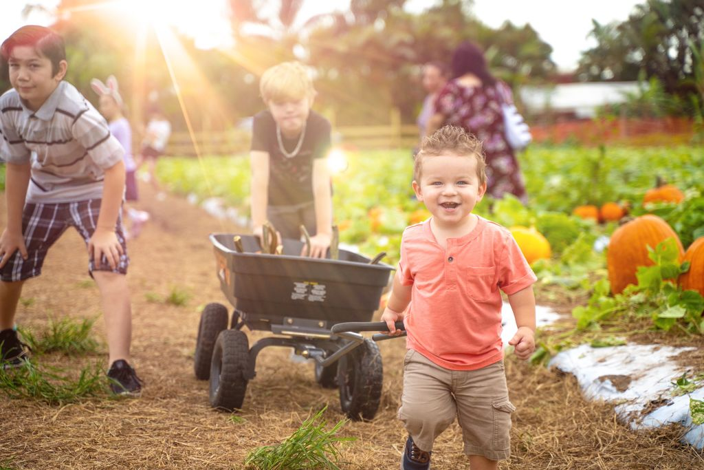Portraiting at the pumpkin patch