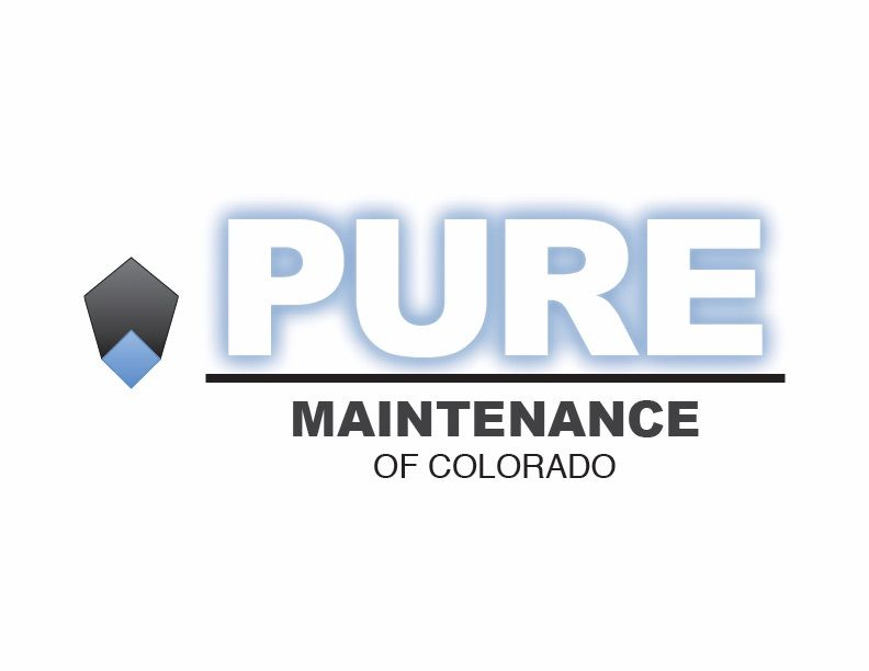 Purity Cloud: Demolition-Free Mold Removal