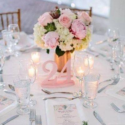 Avatar for Doves N' Roses Wedding Planning