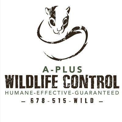 Avatar for A-Plus Wildlife Control Carrollton, GA Thumbtack