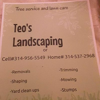 Avatar for Teo's landscaping Saint Louis, MO Thumbtack