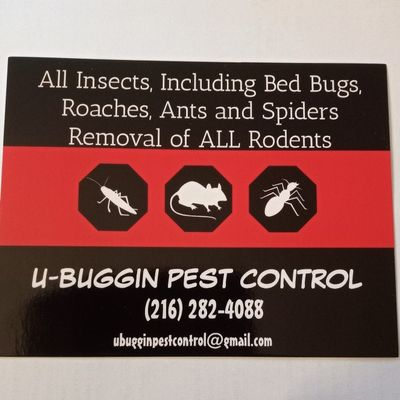 Avatar for U-BUGGIN PEST CONTROL
