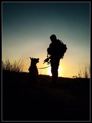 Avatar for Ex military Dog Trainer New York, NY Thumbtack
