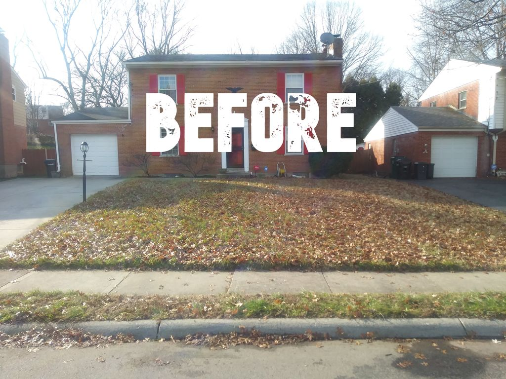 Leaf Removal & Lawn Mowing