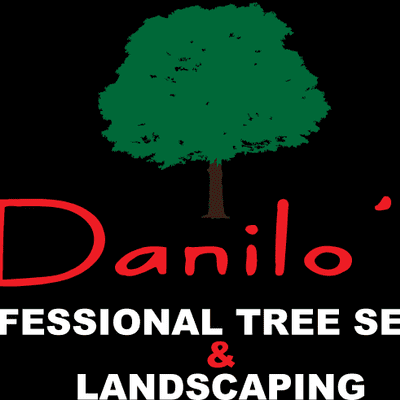 Avatar for DANILO'S PROFESSIONAL TREE SERVICE & LANDSCAPING Marietta, GA Thumbtack