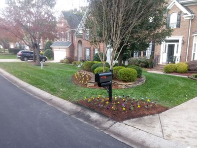 Avatar for Enchanted lawn & landscaping Charlotte, NC Thumbtack