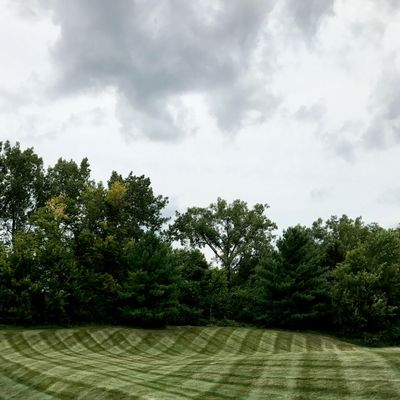 Avatar for Buddy Parks Lawn and Landscape Indianapolis, IN Thumbtack
