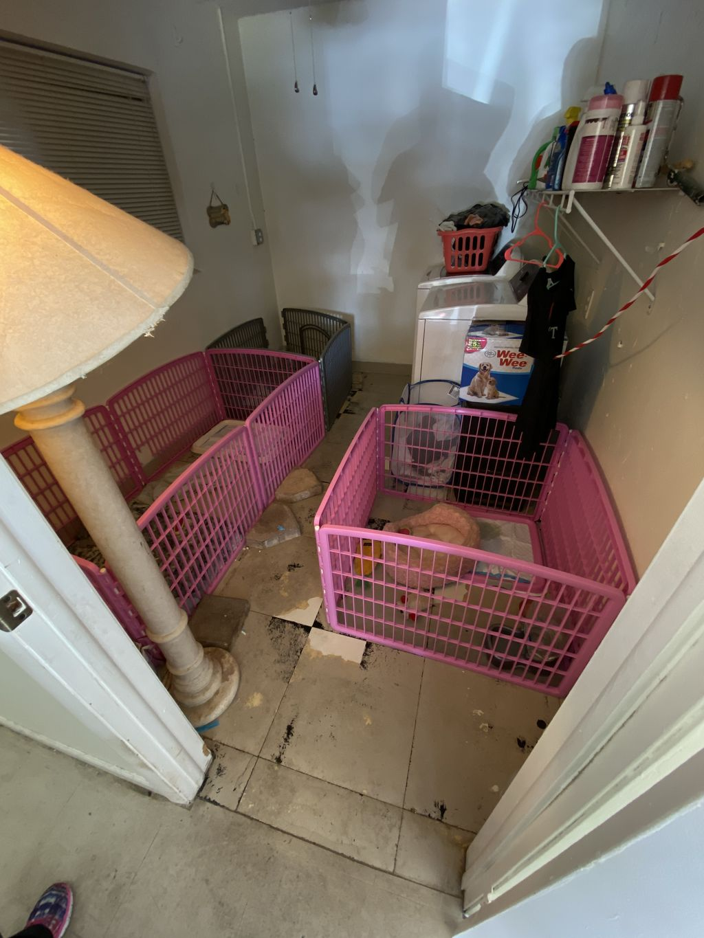 Converted laundry room to puppy kennel