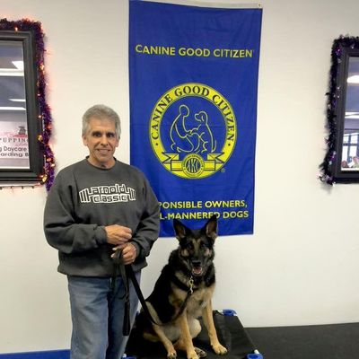 Avatar for Dave's STL Dog Trainers LLC