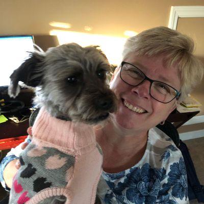 Avatar for 4 P's Dog Training, LLC Attleboro Falls, MA Thumbtack