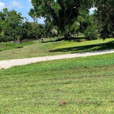 Avatar for Soriano's property management Myakka City, FL Thumbtack