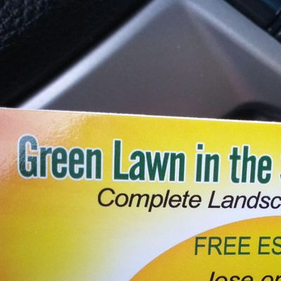 Avatar for Green lawn in the sunrise landscaping