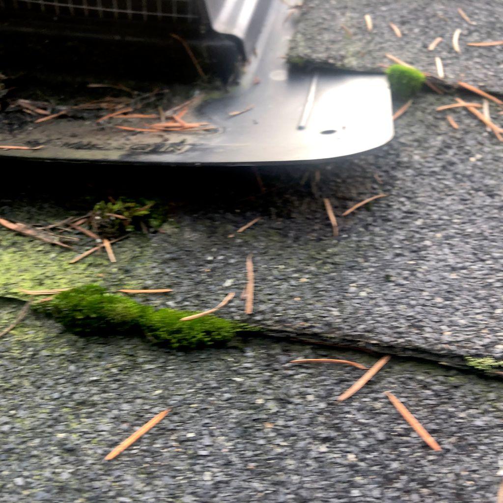 Roof Repair or Maintenance - Lake Oswego 2019