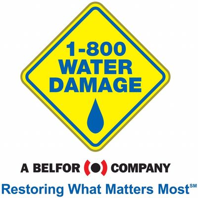 Avatar for 1-800 WATER DAMAGE of Royal Oak/Sterling Heights Warren, MI Thumbtack