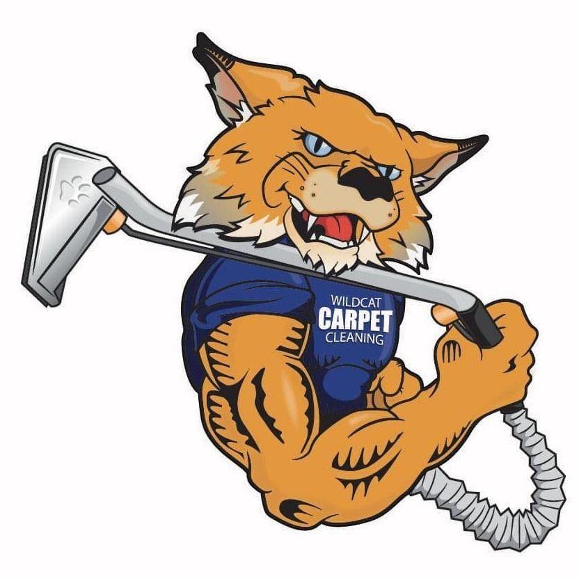 Wildcat Carpet Cleaning