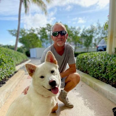Avatar for Canine Compassion Healing and Training Delray Beach, FL Thumbtack