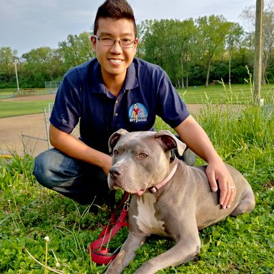 Avatar for BFF Canine Obedience Cincinnati, OH Thumbtack