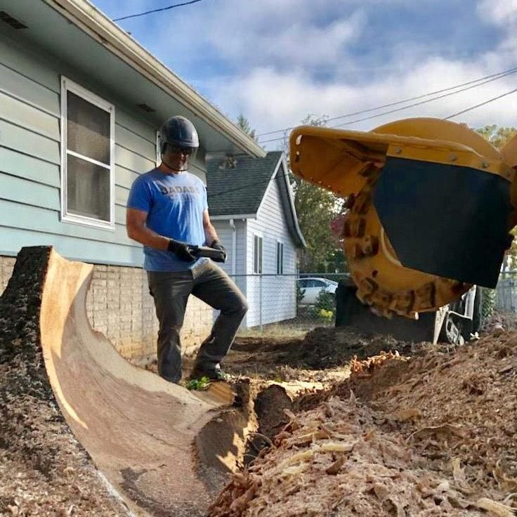 Stump Removal Northwest Inc