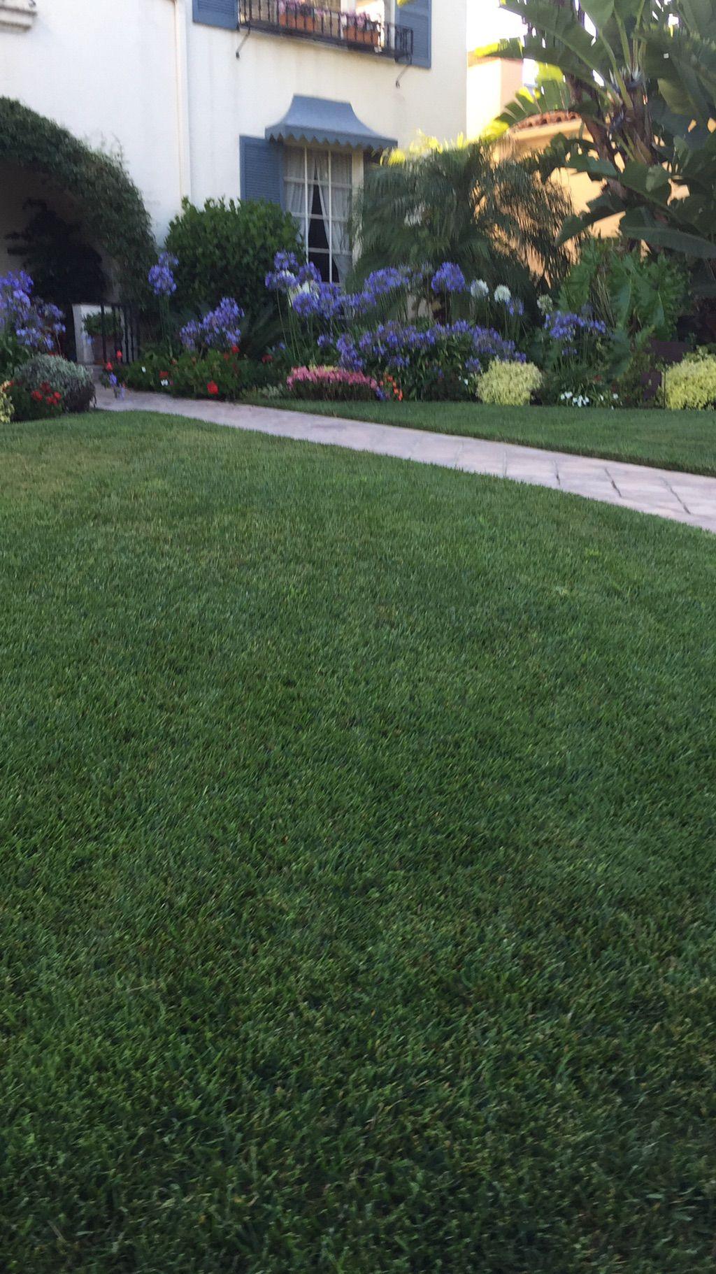 Delgado gardening service LLC