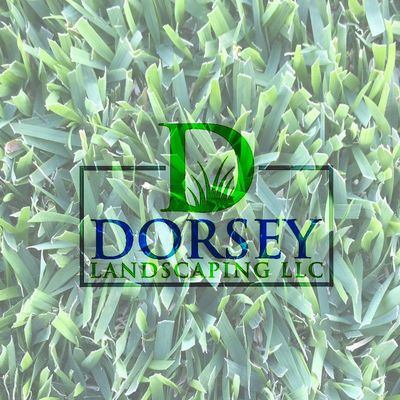 Avatar for Dorsey Landscaping LLC Raleigh, NC Thumbtack