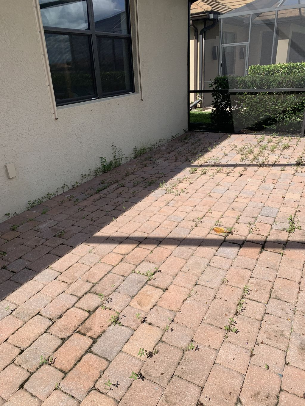 Paver Weed Control