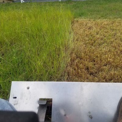 Avatar for Shannon's Lawn Care and hauling service Fort Meade, FL Thumbtack