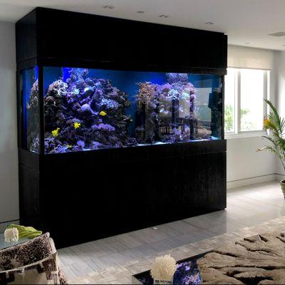 Avatar for Poseidon Aquariums Miami, FL Thumbtack