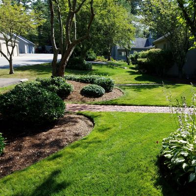 Avatar for Frois landscape Rockland, MA Thumbtack
