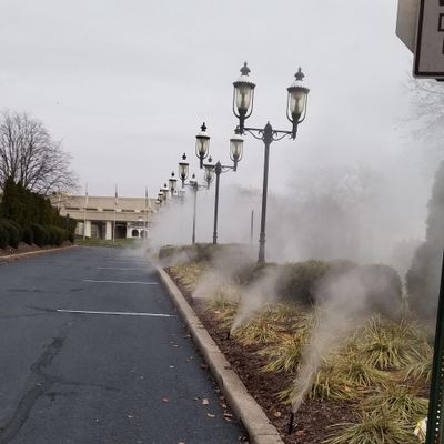 Avatar for LS sprinklers