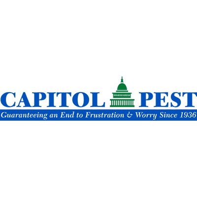 Avatar for Capitol Pest