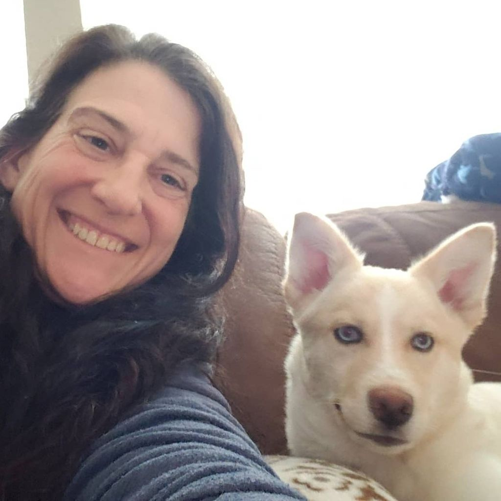 Dog Training Services by Sheila McClain