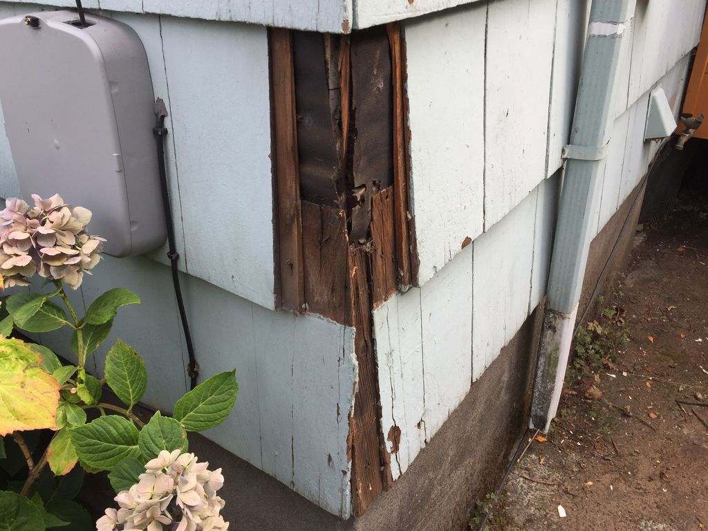 Siding repair and trim replacement