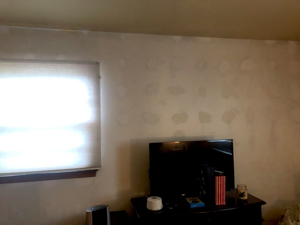 Remove wallpaper- and painting we can do it for you