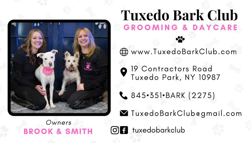 Business Cards for Dog Grooming and Day Care Business