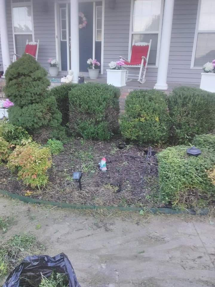 Flower Beds cleaning