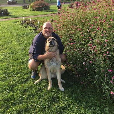 Avatar for North Park Dogs:  Walking & Pet Sitting Glenshaw, PA Thumbtack