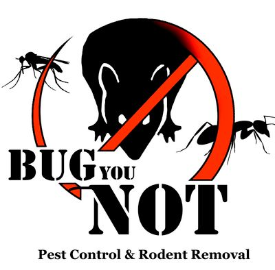 Avatar for Bug You Not