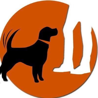 Avatar for Prodogz Dog Training Medford, OR Thumbtack