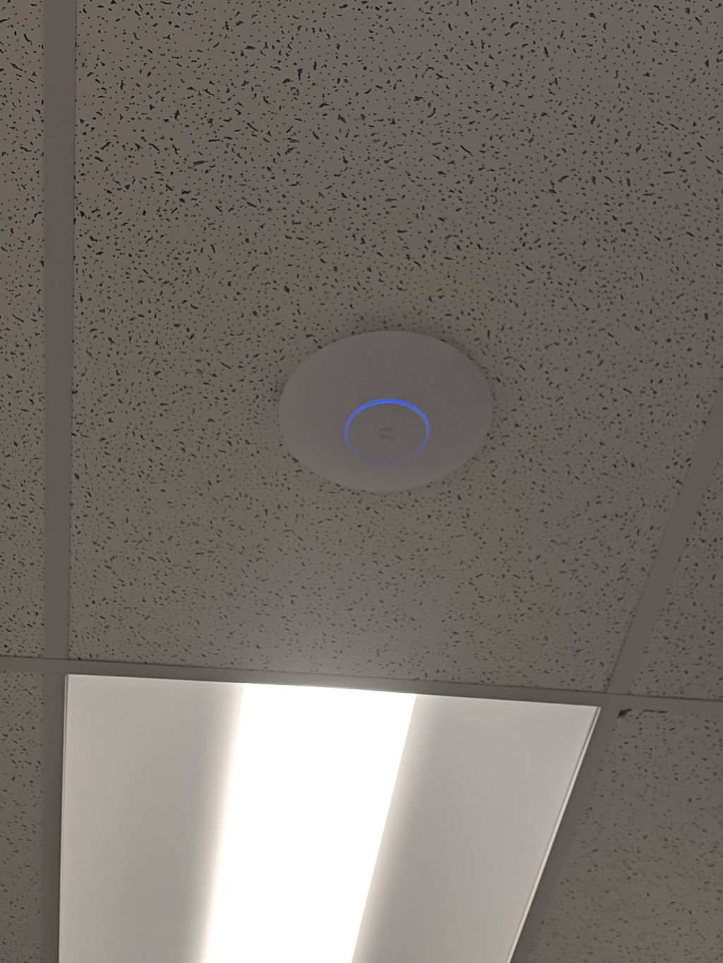 Office and Warehouse WiFi Installation