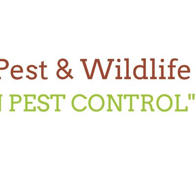Avatar for Angies Pest and Wildlife Dunkirk, MD Thumbtack